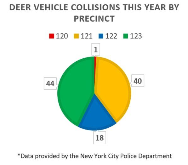 deer vehicle collisions 2019 ny pie chart