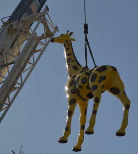 Patch, the Nut Tree giraffe, gets lifted by crane back to his original spot outside the carousel. Ptach had undergone repairs as a result of a car accident in August.